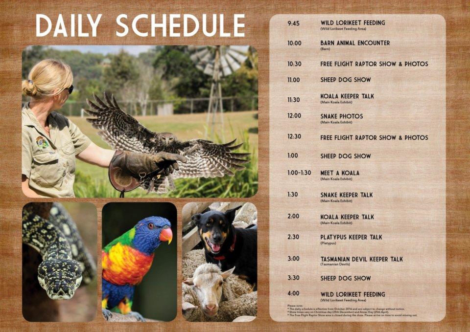 Lonepine Schedule